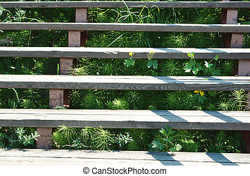 green grass sprouted through the wooden stairs, wooden staircase covered with grass