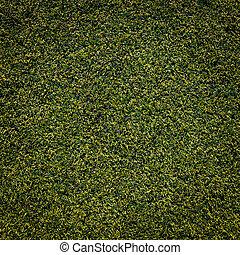 green grass texture background