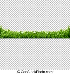 Green Grass Transparent Background