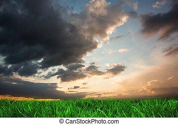 Green grass under blue and orange sky