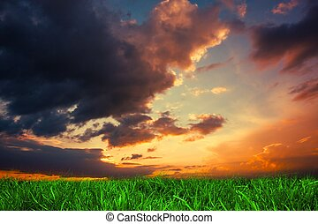 Green grass under dark blue and orange sky