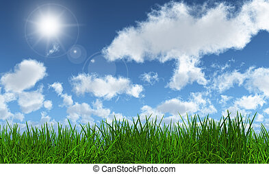Green grass with a sunny blue sky - 3D render of lush green...