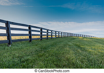 Green Grass with Black Fence Over Hill