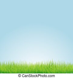 Green grass with blue background. Vector illustration
