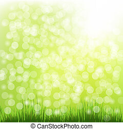 Green Grass With Bokeh