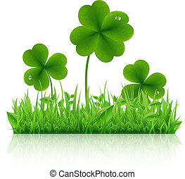 Green Grass With Clover, Isolated On White Background,...