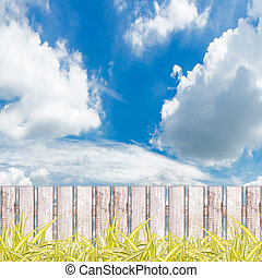Green grass with fence against blue sky background.