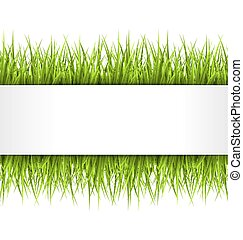 Green grass with frame isolated on white. Floral eco nature