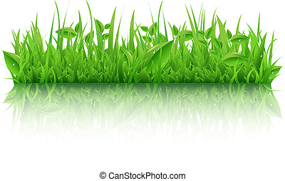 Green Grass With Leafs