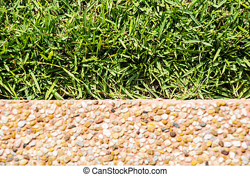 Green grass with Polished stone texture background