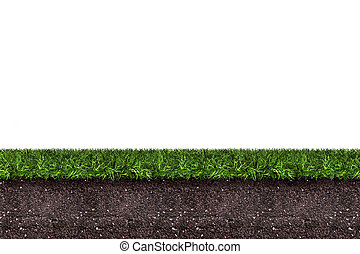 green grass with soil on white background,3d rendering