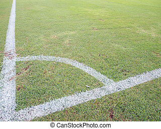 green grass with white line