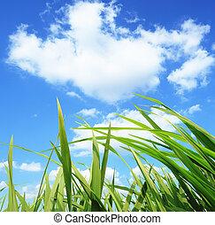 green grass,development environmental protection concept -...