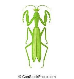 Green Grasshopper Icon