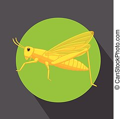 Green Grasshopper Insect Vector Illustration