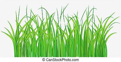 green grassy field - Vector illustration of Straight forward...