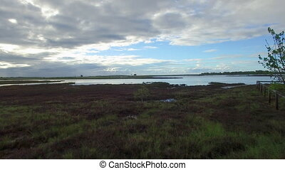 Green grassy land and skies - A wide shot of a land and...