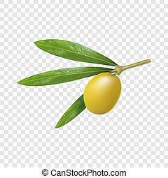 Green greek olive icon, realistic style