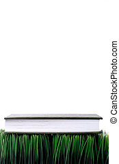 Green hardcover book sitting on grass with a white background with space for copy