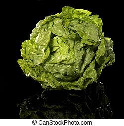 green head of lettuce