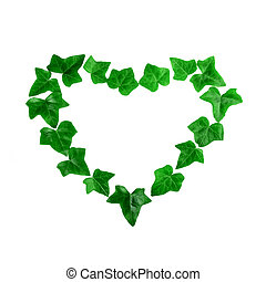 Green heart pattern made of ivy leaves on white background. Flat lay.