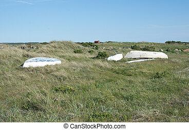 Green heath with resting boats near Falkenberg, Sweden.