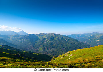 green high scenic mountain vista Poland - Kasprowy Wierch