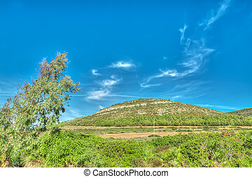 green hill in Porto Conte, Sardinia
