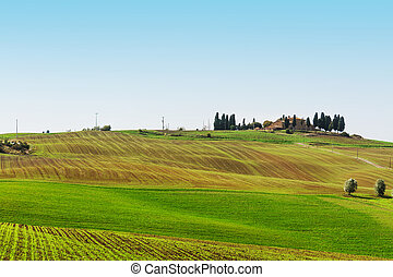 green hill in Val d'Orcia