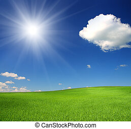 green hill with wheat under blue sky with sun