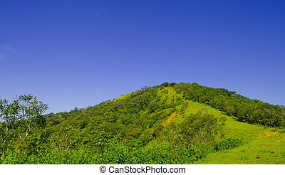green hill with blue sky