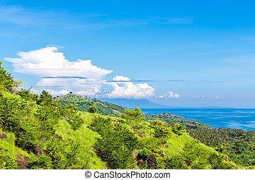 Green hills in the ocean