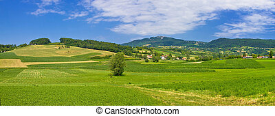 Green hills nature panoramic view