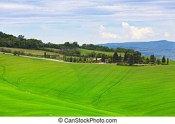 Green hills of Tuscany under the blue sky with white clouds