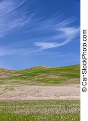 Green hills under a blue sky.