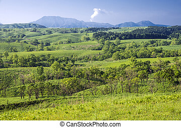 Green hilly area