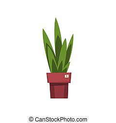 Green home decorative plant, unnecessary thing, garage sale vector Illustration on a white background