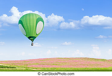 Green hot air balloon over pink flower fields