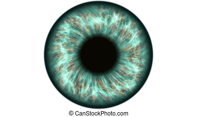 Green human eye dilating and contracting. Very detailed...