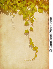 green ivy on old grunge antique paper texture