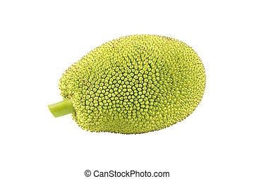 Green jackfruit isolated on white background