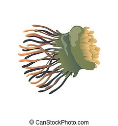 Green jellyfish close up. Vector illustration on white background.