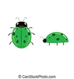 green ladybug illustration