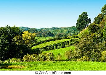 green landscape - beautiful green farmland landscape scene