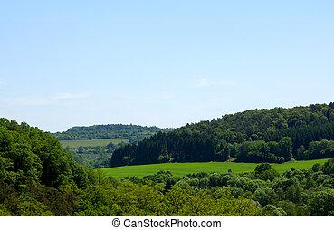 Green landscape in the eifel (germany)