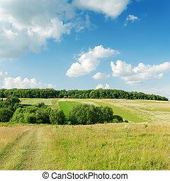 green landscape under clouds in blue sky
