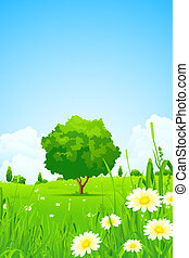 Green Landscape with Trees - Green Landscape with Flowers...