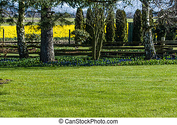 Green lawn in a landscaped garden