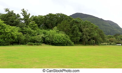 Green lawn in front of Muckross Lake. Killarney National...