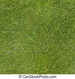Repeating green weed free close cut grass lawn. Tileable wallpaper repeats left, right, up and down.